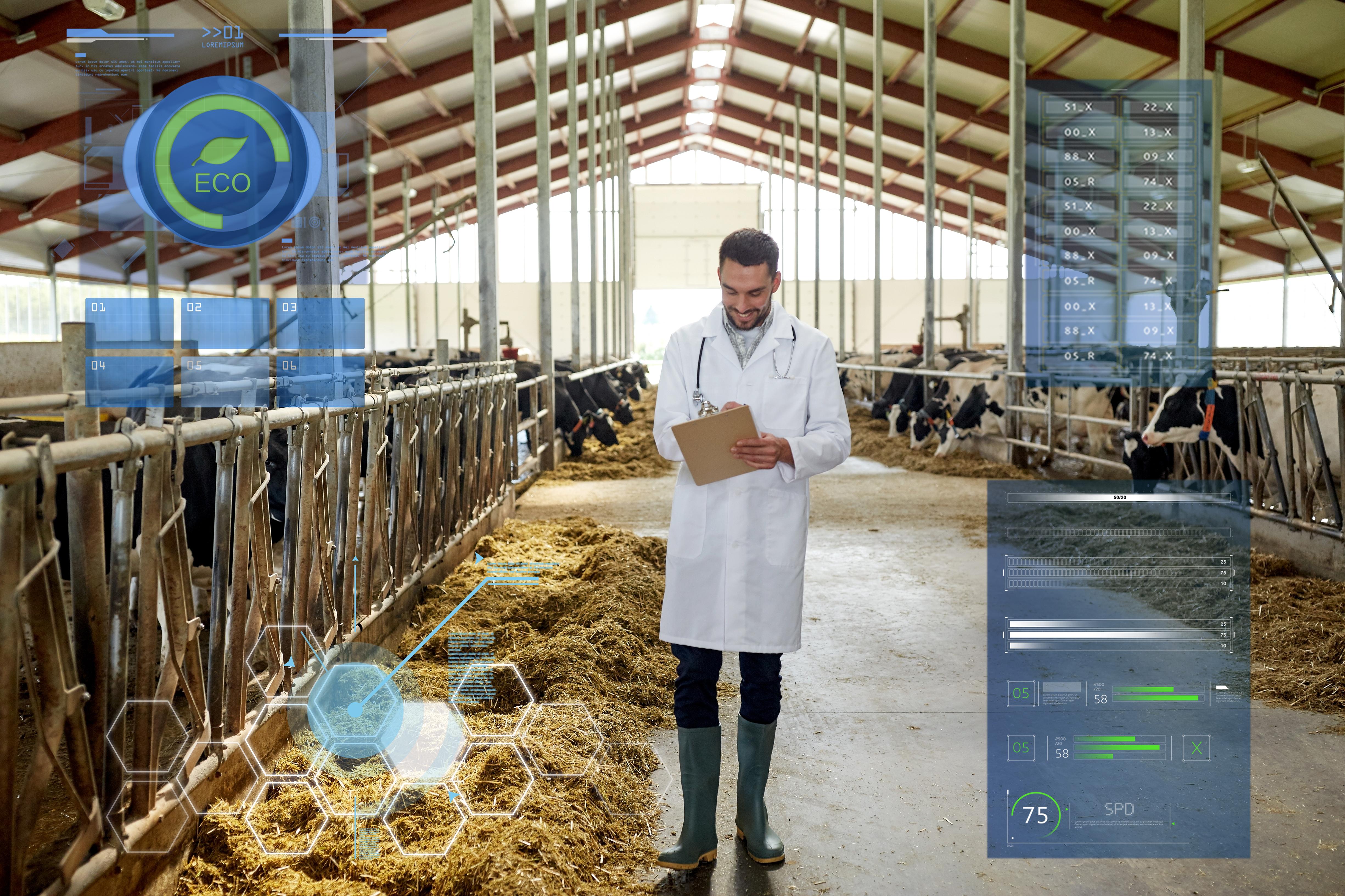 Le applicazioni dell IoT nell allevamento