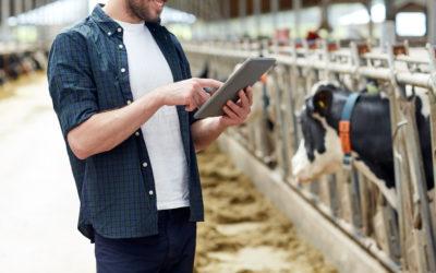 Agricoltura 4.0: valorizzare i dati IoT