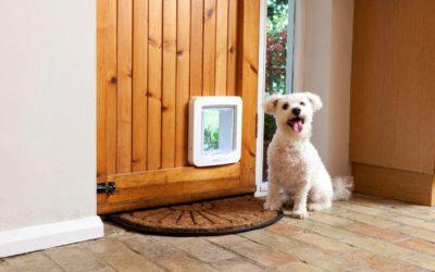 Ancora novità dall'Internet of Pets